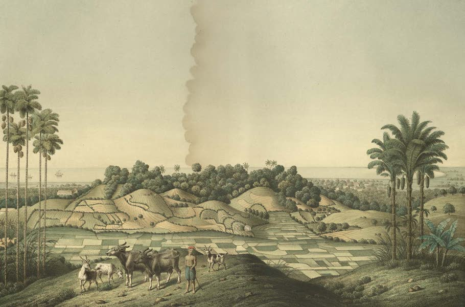 Elf Landschafts-Ansichten von Java - Nordkuste Bei Samarang (1853)
