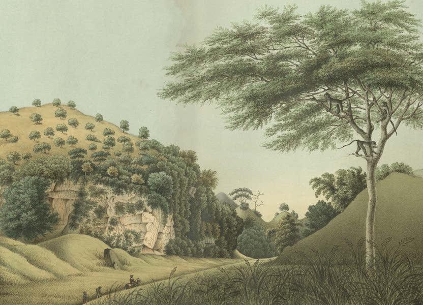 Elf Landschafts-Ansichten von Java - Gunung-Sewu (1853)