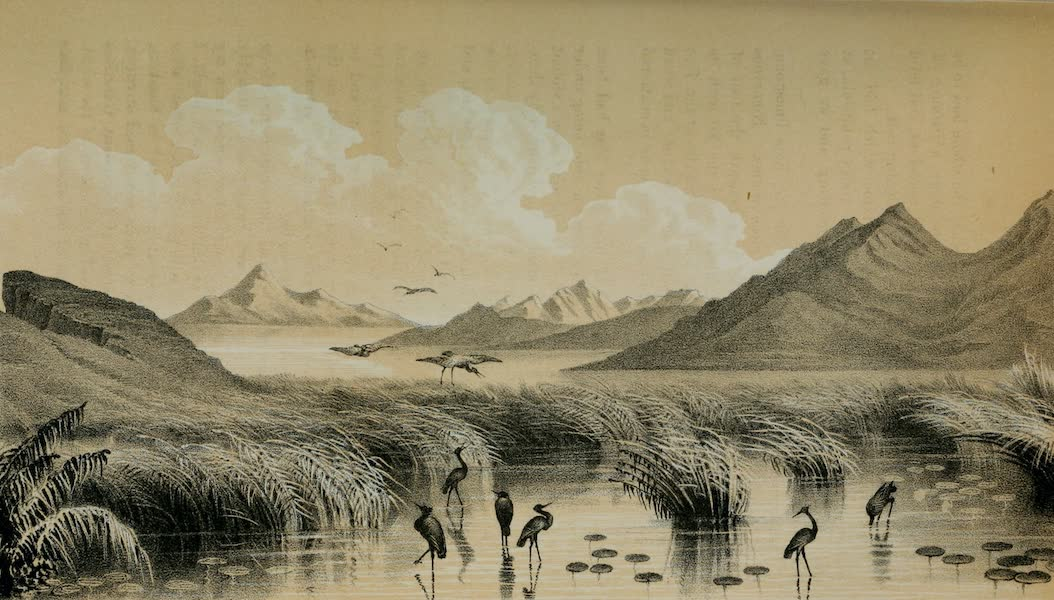 Exploration and Survey of the Valley of the Great Salt Lake of Utah - Landing to Encamp - Bear River Bay - Great Salt Lake (1852)