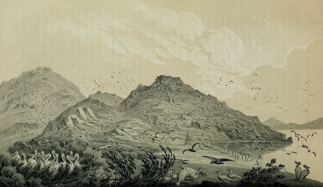 Exploration and Survey of the Valley of the Great Salt Lake of Utah - Gunnison's Island - Eastern Shore (1852)