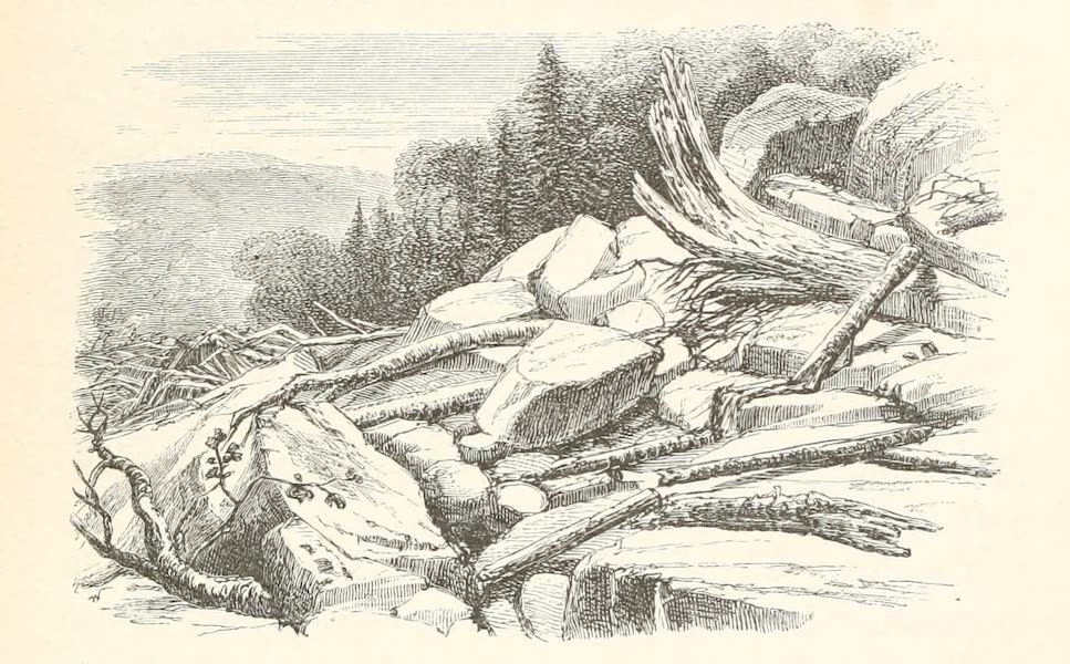 Explorations in the Interior of the Labrador Peninsula Vol. 1 - Land-Slide on Cold Water River Portage (1863)