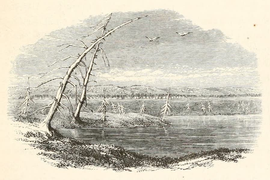 Explorations in the Interior of the Labrador Peninsula Vol. 1 - Caribou Lake Near the Table Land (1863)