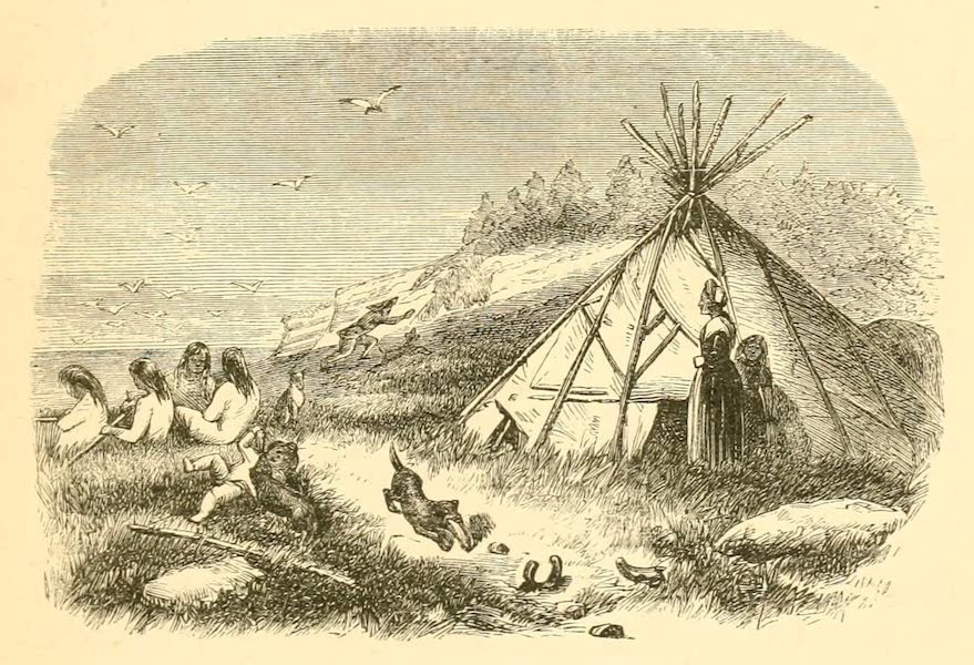 Explorations in the Interior of the Labrador Peninsula Vol. 2 - Montagnais Camp on One of the Mingan Islands (1863)