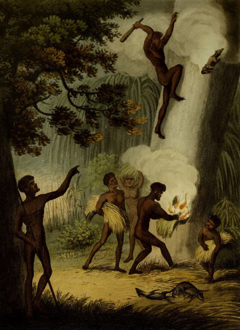 Field Sports of the Native Inhabitants of New South Wales - Smoking Out the Opossum (1813)
