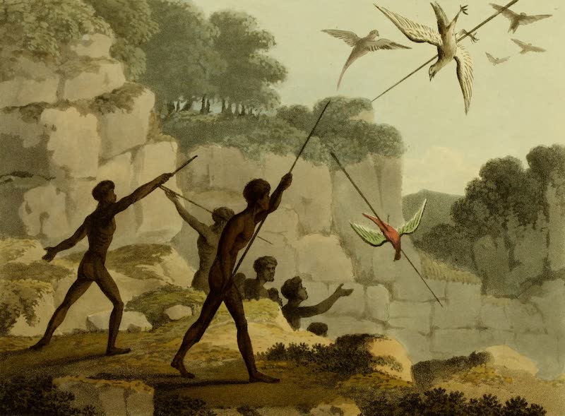 Field Sports of the Native Inhabitants of New South Wales - Throwing the Spear (1813)