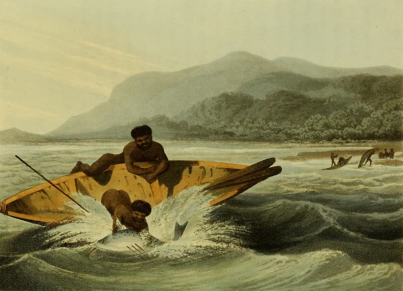 Field Sports of the Native Inhabitants of New South Wales - Fishing No. 2 (1813)