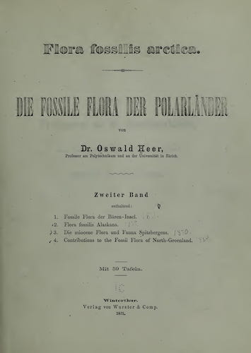 Natural History - Flora Fossilis Arctica Vol. 2