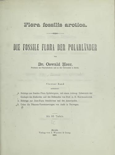 Natural History - Flora Fossilis Arctica Vol. 4