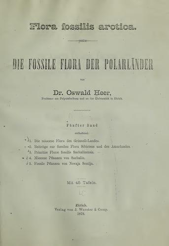 Natural History - Flora Fossilis Arctica Vol. 5