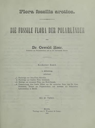 Natural History - Flora Fossilis Arctica Vol. 6