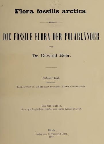 Natural History - Flora Fossilis Arctica Vol. 7
