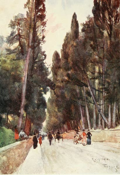 Florence & Some Tuscan Cities Painted and Described - Looking down the Cypress Avenue of Poggio Imperiale, on the Road to Arcetri (1905)