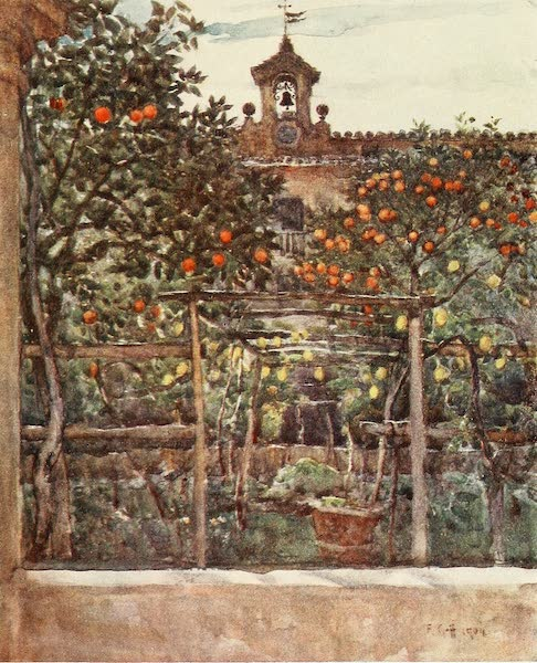 Florence & Some Tuscan Cities Painted and Described - Study of Orange and Lemon Trees, in an Ancient Convent Garden (1905)