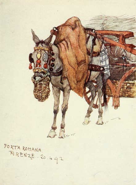 Florence & Some Tuscan Cities Painted and Described - Study of Mule, with Decorated Harness (1905)