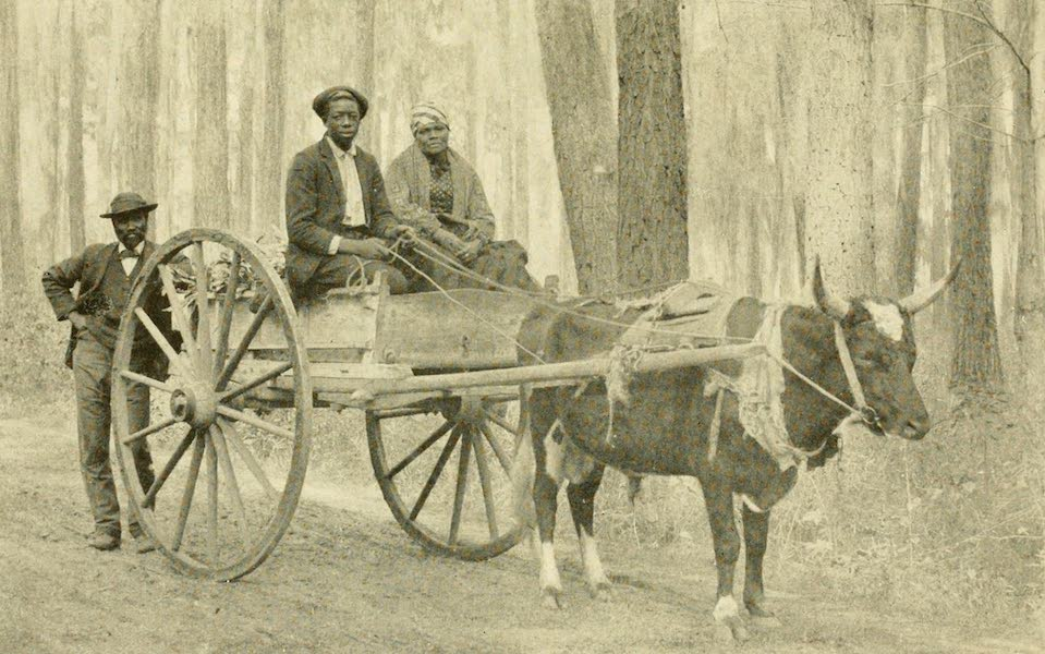"""Florida, the Land of Enchantment - """"Going to Town"""" (1918)"""