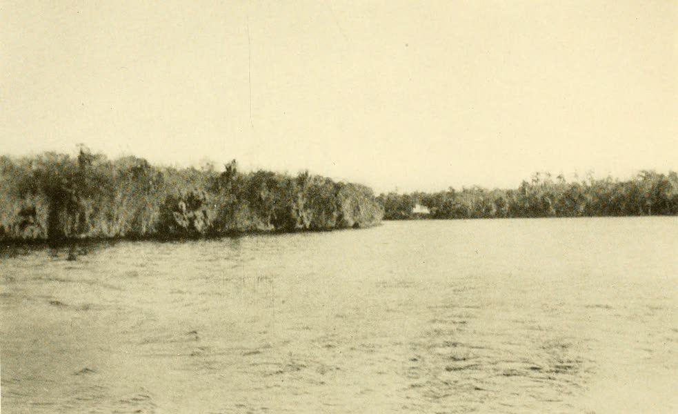 Florida, the Land of Enchantment - The St. John's River (1918)