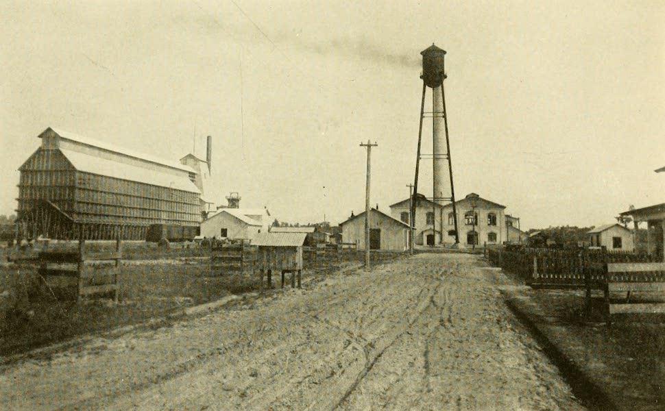 Florida, the Land of Enchantment - A Phosphate Plant, near Lakeland (1918)