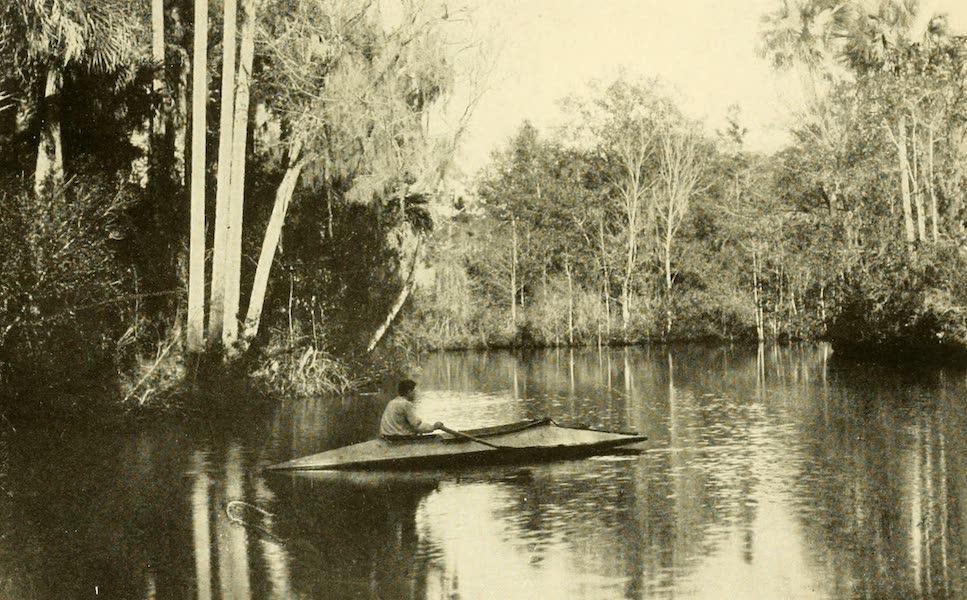 Florida, the Land of Enchantment - A Tropical Florida River (1918)