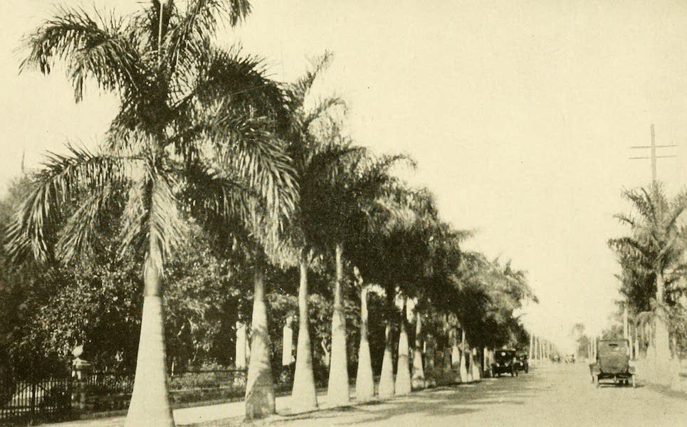 Florida, the Land of Enchantment - A View at Fort Myers (1918)