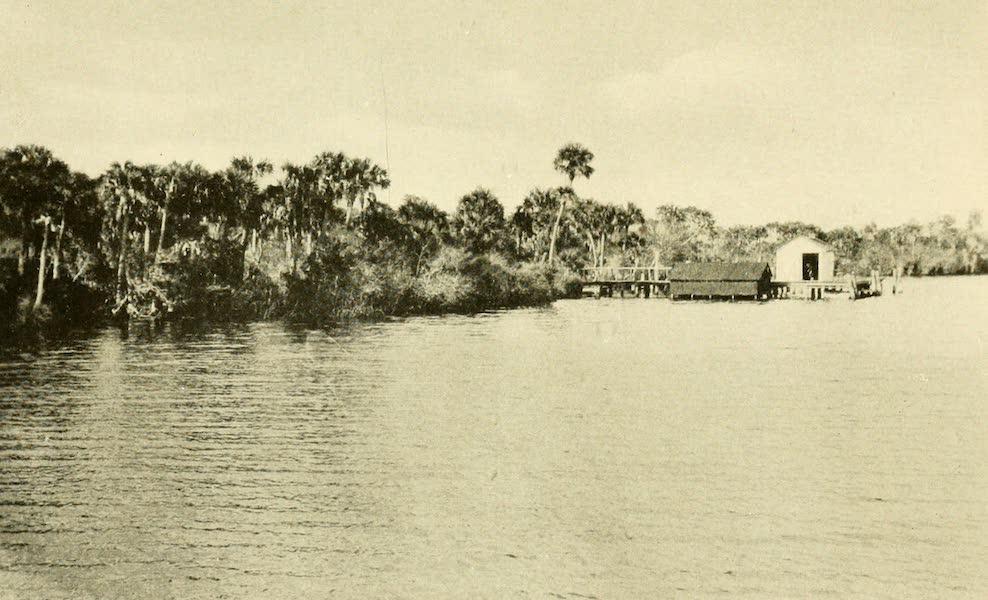 Florida, the Land of Enchantment - Along the Caloosahatchee River (1918)