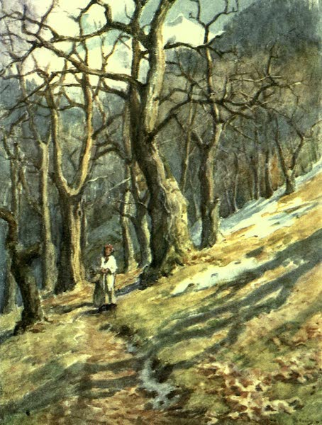 France by Gordon Home - In the Forest (1918)