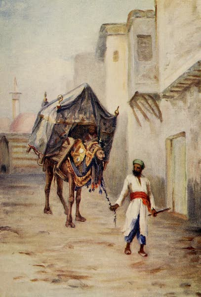 From Damascus to Palmyra - Camel Driver (1908)