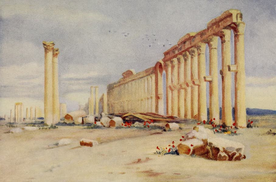 From Damascus to Palmyra - Colonnade, Palmyra, with Turkish Castle in the Distance (1908)