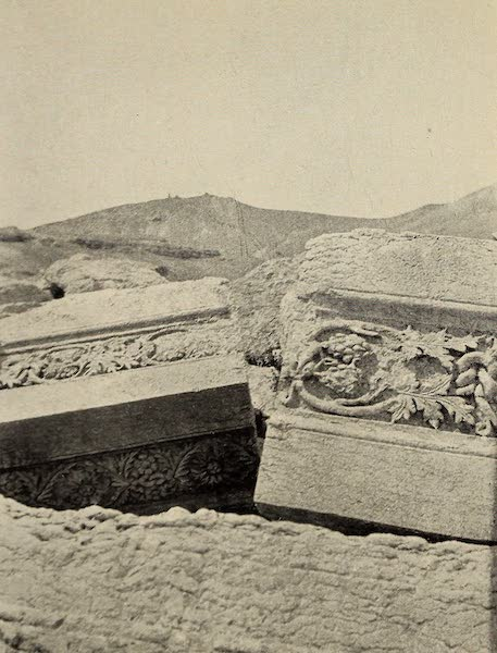 From Damascus to Palmyra - Vine-pattern Carvings on Fallen Blocks, Palmyra. From a Photograph (1908)
