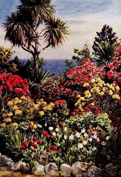 "Gardens of England, Painted and Described - ""Carmino,"" Falmouth (1911)"
