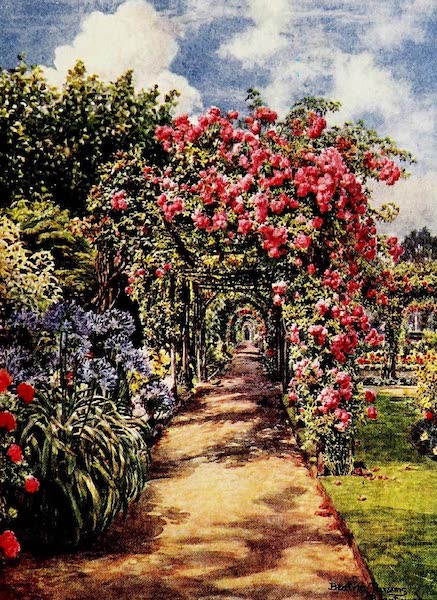 Gardens of England, Painted and Described - The Pergola, Brantwood, Surbiton (1911)