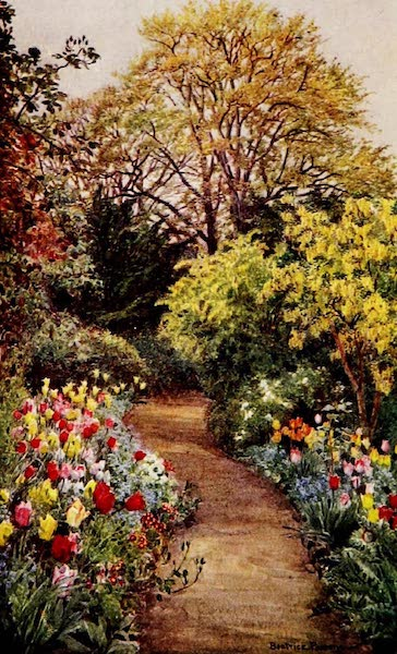 """Gardens of England, Painted and Described - Tulips in """"The Garden of Peace"""" (1911)"""
