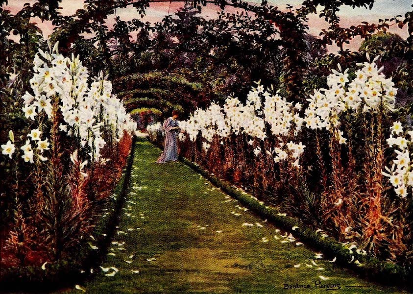 Gardens of England, Painted and Described - The Lily Walk, Dingley Park (1911)