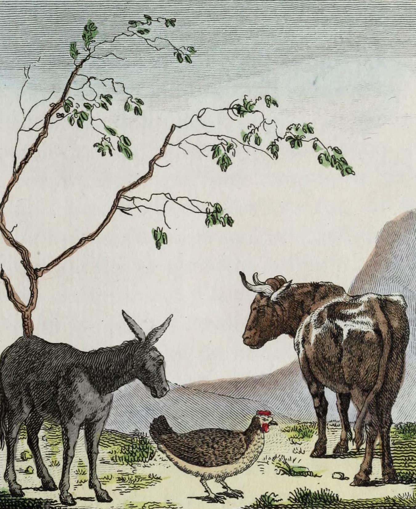 Geographie Vivante, ou, Tableaux Raisonnes - L'Ane, la Poule, le Boeuf (1821)