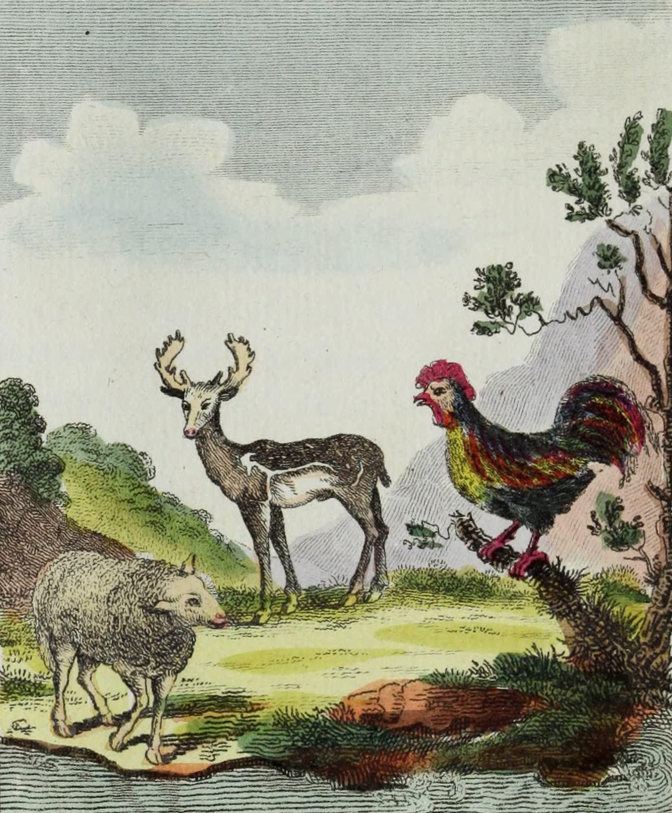Geographie Vivante, ou, Tableaux Raisonnes - Le Dain, le Mouton, le Coq (1821)