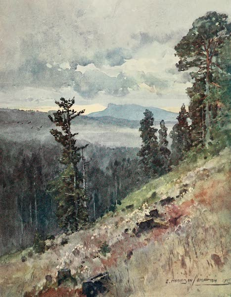 Germany, Painted and Described - The Horselberg-Forest of Thuringen (1912)