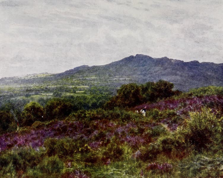 Happy England Painted and Described - Hindhead from Witley Common (1909)