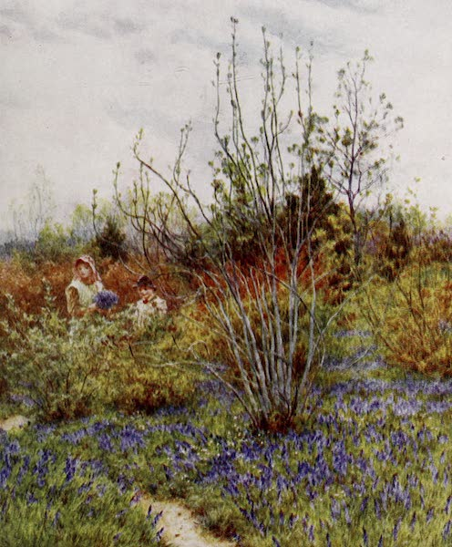 Happy England Painted and Described - The Cuckoo (1909)