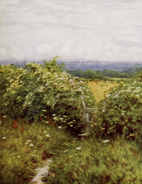 Happy England Painted and Described - On the Pilgrims' Way (1909)