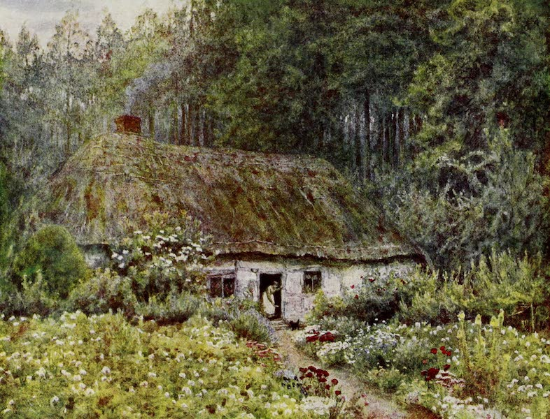 Happy England Painted and Described - In Wormley Wood (1909)