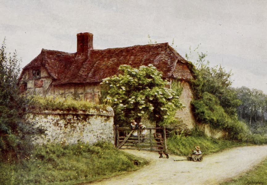 Happy England Painted and Described - The Elder Bush, Brook Lane, Witley (1909)