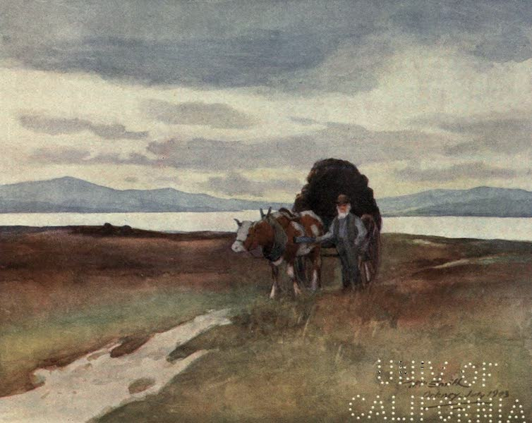 Highlands and Islands of Scotland Painted and Described - Carting Peat, Orkney (1907)