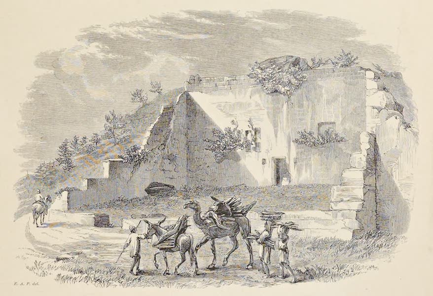 History of the Recent Discoveries at Cyrene - Large Tomb at the Eastern End of the Northern Necropolis (1864)