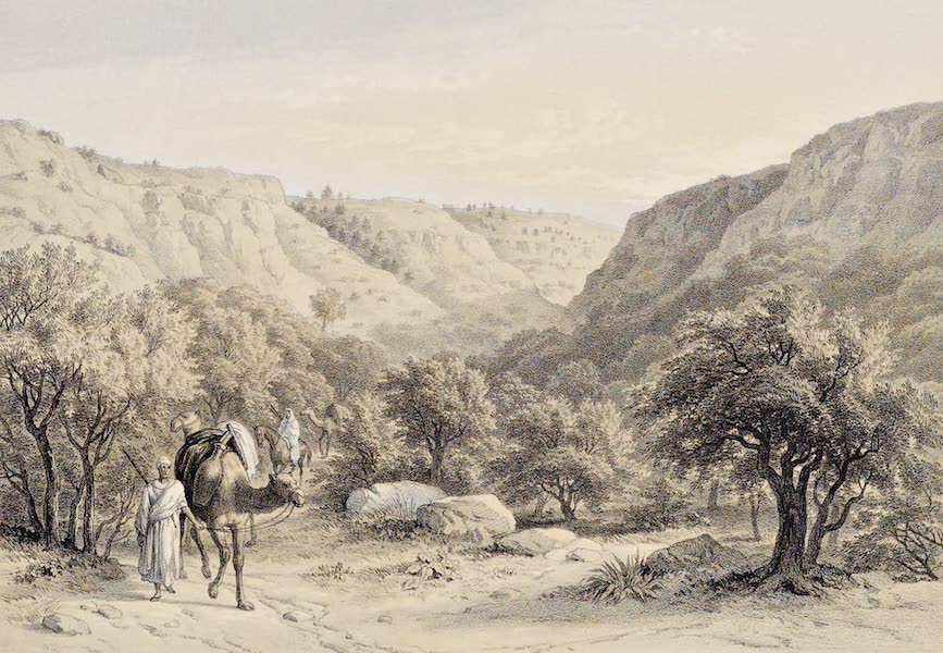 History of the Recent Discoveries at Cyrene - Wady Muchgun Two Miles to the Westward of Cyrene (1864)