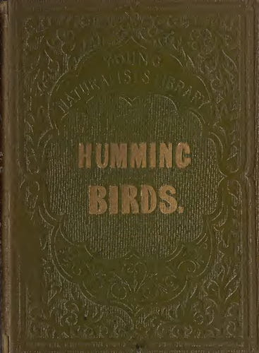 Aquatint & Lithography - Humming Birds, Described and Illustrated