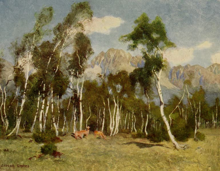 Hungary, Painted and Described - The Carpathian Mountains from Luesivna-Furdo) (1909)
