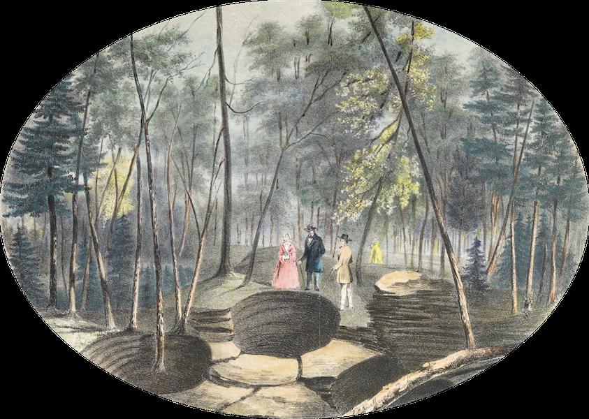 Hunter's Ottawa Scenery - Natural Curiosity, Ottawa River, Canada (1855)