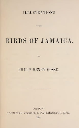 English - Illustrations of the Birds of Jamaica