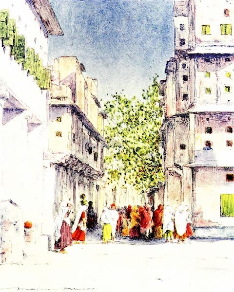 India by Mortimer Menpes - Through the Streets of Delhi (1905)