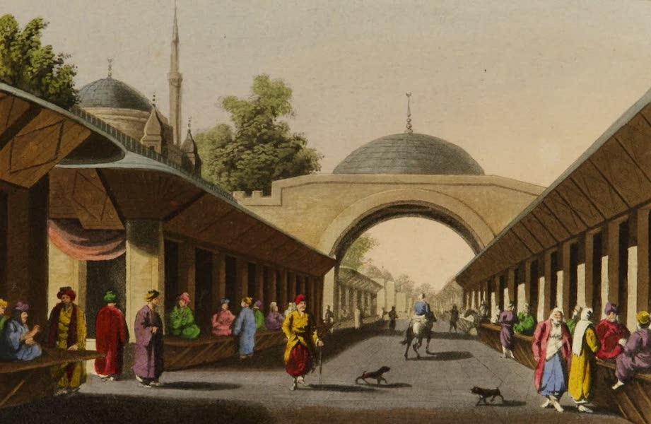 Interesting Views in Turkey - Borgas (1819)