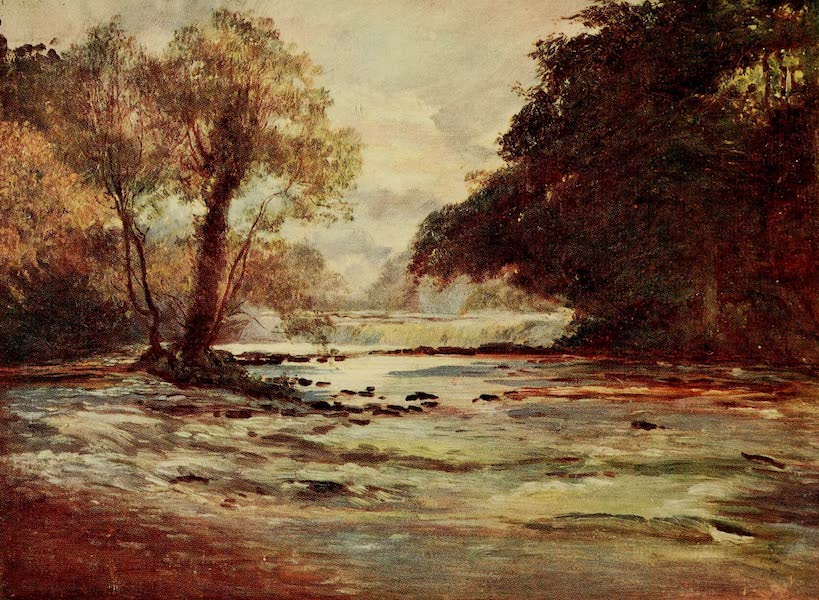 Ireland Painted and Described - The Salmon Leap (1907)